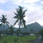 YorkMatafau.down road from compound