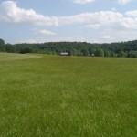 Hay field south toward house