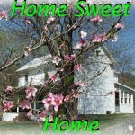 Home place Spring