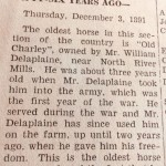 Oldest horse, Deleplaine, NRMillsHampReviewFromDebBoyce