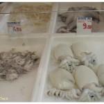 Vercelli market