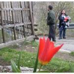 April5_2004VercelliLunediCastleSwim 099