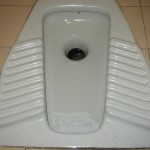 Mi dispiace.  Toilets fascinate me.